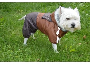 Комбінезон Дует з капюшоном для собак