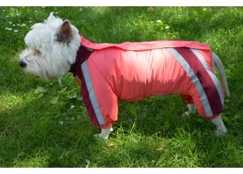 Комбінезон Зоря для собак