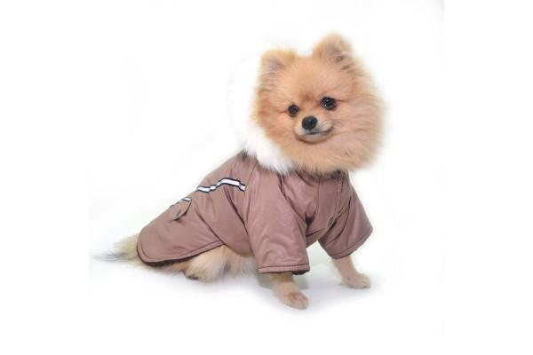 Курточка Осінь c капюшоном для собак